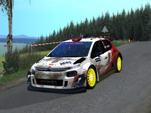 Zespół AP mistrzem Virtual Rally Championship